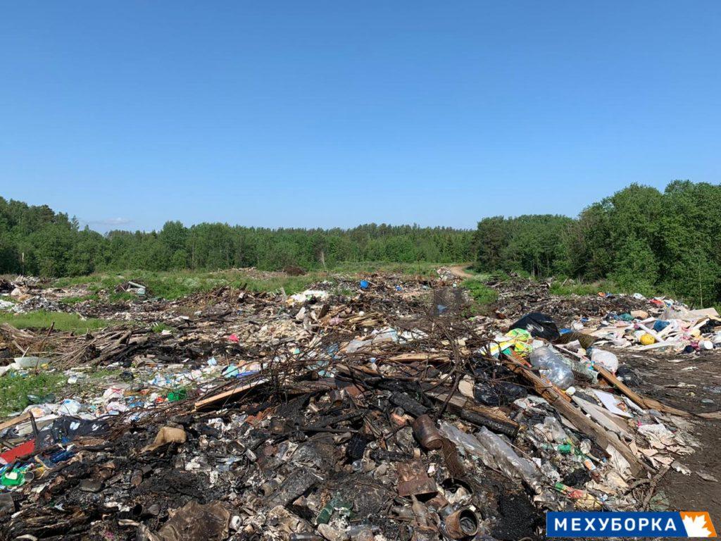 Несанкционированное размещение опасных отходов выявлено в Стругокрасненском районе