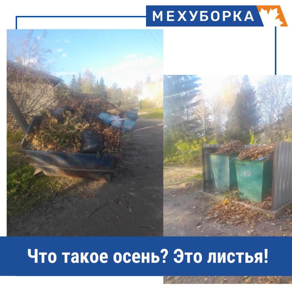 Осень — это время листопадов. Однако, куда девать такие отходы после уборки — вопрос, который интересует многих.